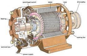 Marjoriecarl electricalmotor for Who invented the electric motor in 1873