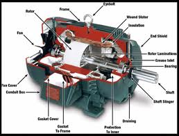 Marjoriecarl Electricalmotor